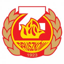 119642_750x360_logo_znicz_t