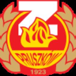 logo_znicz